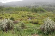 Utah stock images -- Spring